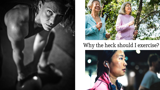 Why the heck should I exercise, on ALVN