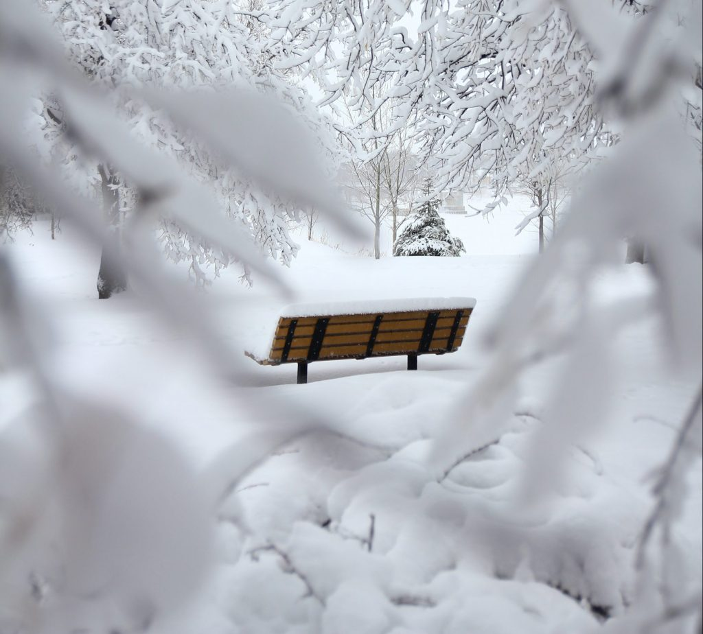ALVN Seasons of the Heart